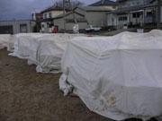 1.14-aihama-w.jpg